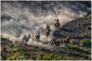 ICPE Honor Mention e-certificate - Thomas Lang (USA)  Chasing Mustang