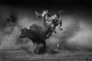 Honor Mention - Guoxi Jiang (Australia)  Gladiator1