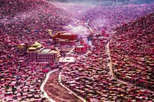 PhotoVivo Gold Medal - Yaojian Sheng (China)  Buddha Land