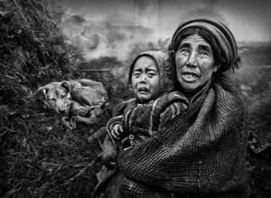 PhotoVivo Honor Mention e-certificate - Ching Ching Chan (Hong Kong)  Warmth Of A Hug