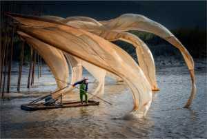 PhotoVivo Gold Medal - Yi Wan (China)  Hanging Net 14