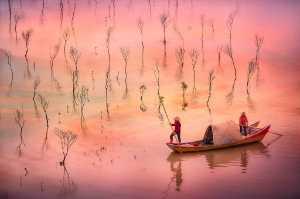 Circuit Merit Award e-certificate - Min Tan (Malaysia)  Sunrise Fishing