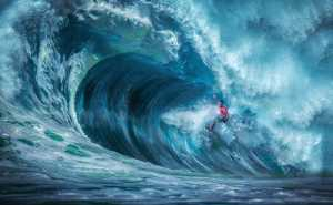 PhotoVivo Gold Medal - Pandula Bandara (Sri Lanka)  Through The Wave 2