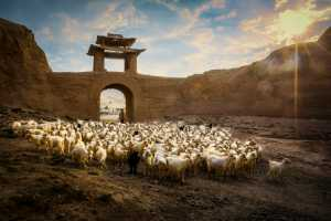 PhotoVivo Gold Medal - Renfa Mao (China)  Ancient Village Pastoral