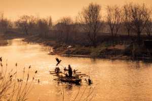 PhotoVivo Gold Medal - Guixiang Sang (China)  Riverrun