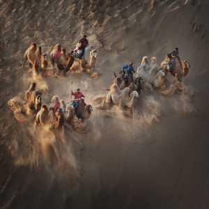 APAS Honor Mention e-certificate - Qingcun Zhang (China)  Camels In Desert