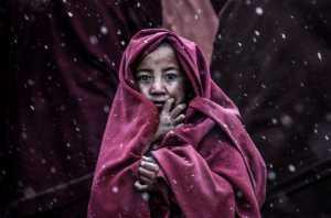 PhotoVivo Gold Medal - Yong Lin (China)  Little Monk