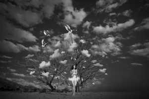 PhotoVivo Gold Medal - Zhihong Xu (China)  Flying Dream