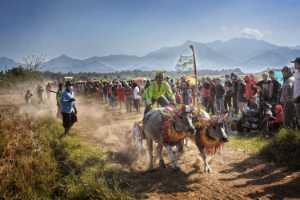 PhotoVivo Gold Medal - Pui-Chung Yee (Singapore)  Race At Jembrana