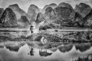 PhotoVivo Gold Medal - Pui-Chung Yee (Singapore)  Guilin Bridge Shepherd