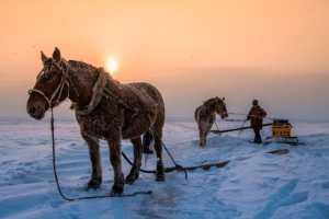 APU Gold Medal - Haojiang Huang (China)  Fishing In Winter 5