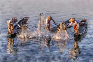 PhotoVivo Honor Mention e-certificate - Htet Aung Myin (Singapore)  Happy Fishing