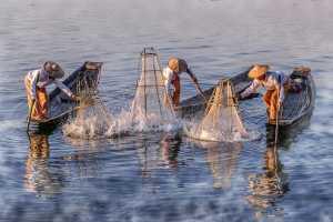 APU Honor Mention e-certificate - Htet Aung Myin (Singapore)  Happy Fishing
