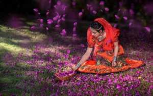 PhotoVivo Gold Medal - Barun Sinha (India)  Udaipur # 1
