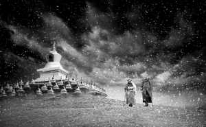PhotoVivo Gold Medal - Wei Ye (China)  Snowy Days In Aba