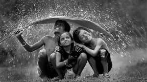 FIP Gold Medal - Varada Nayaka (India)  Rain On Leaf