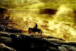 PhotoVivo Gold Medal - Shangyou Deng (China)  Life Of Herdsman