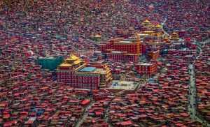PhotoVivo Honor Mention e-certificate - Guixiang Huang (China)  Land Of Buddha