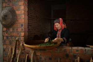 ICPE Honor Mention e-certificate - Shubin Qing (China)  Tea Rhyme Of Yao Village 3